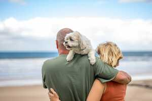Ferienhaus mit Hund an der Nordsee