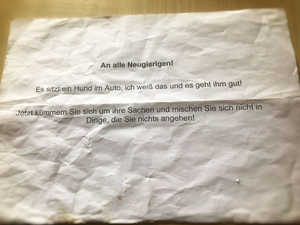 Hund starb in heißem Auto - Besitzer schrieb: Es geht ihm gut