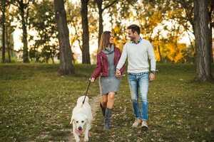 Wie Hunde unser Liebesleben beeinflussen